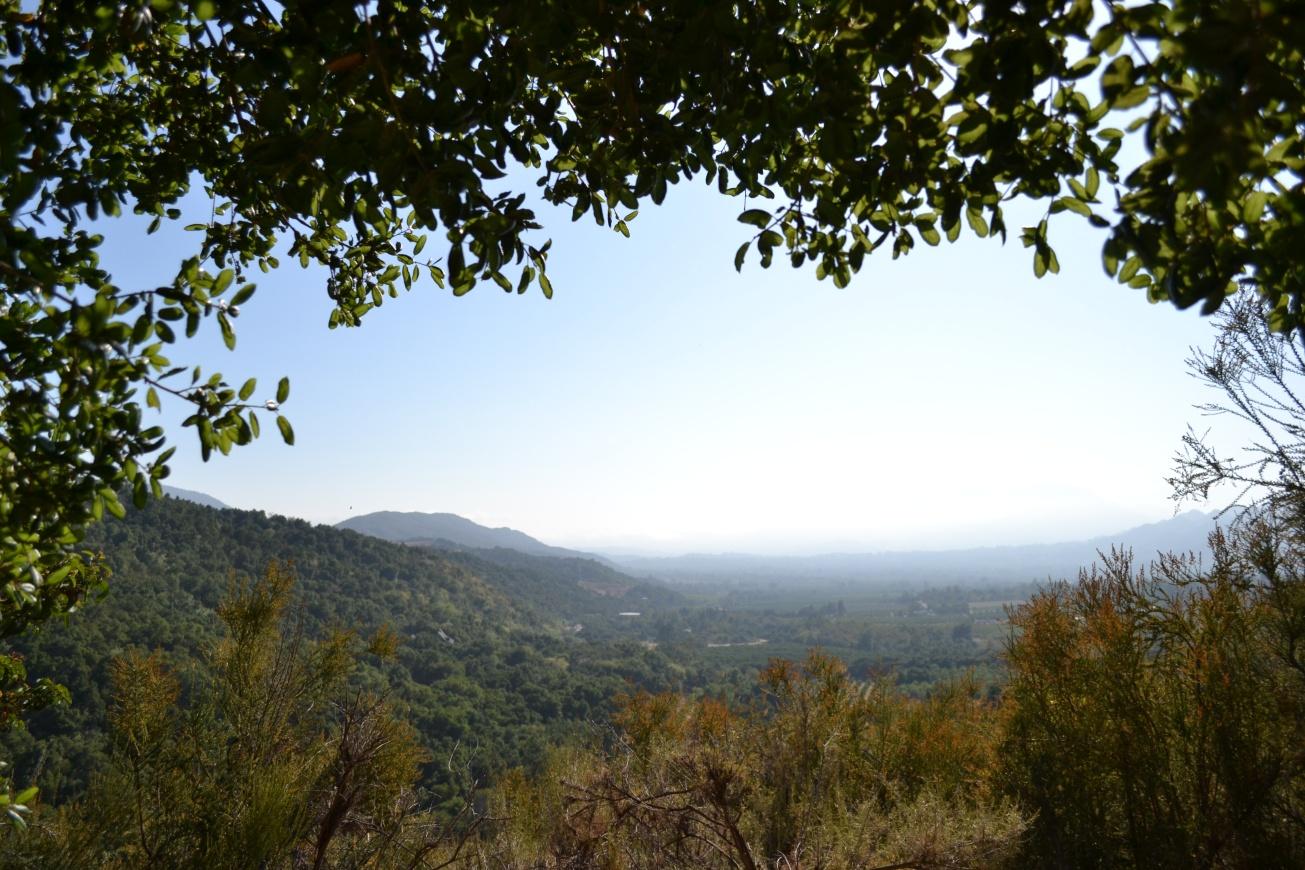 Meditation Mount, Ojai, meditation, International Garden of Peace
