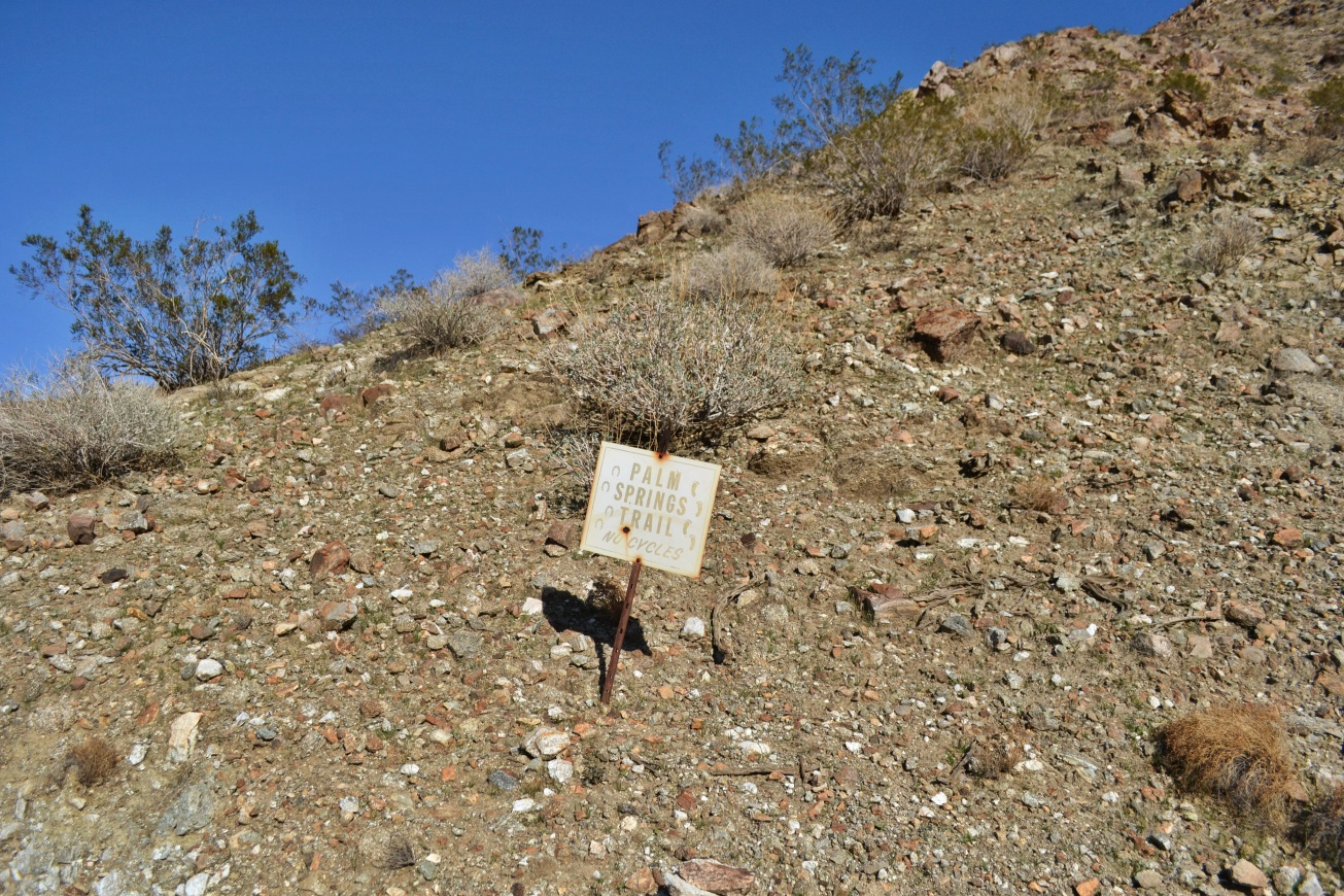 Palm Springs Trail