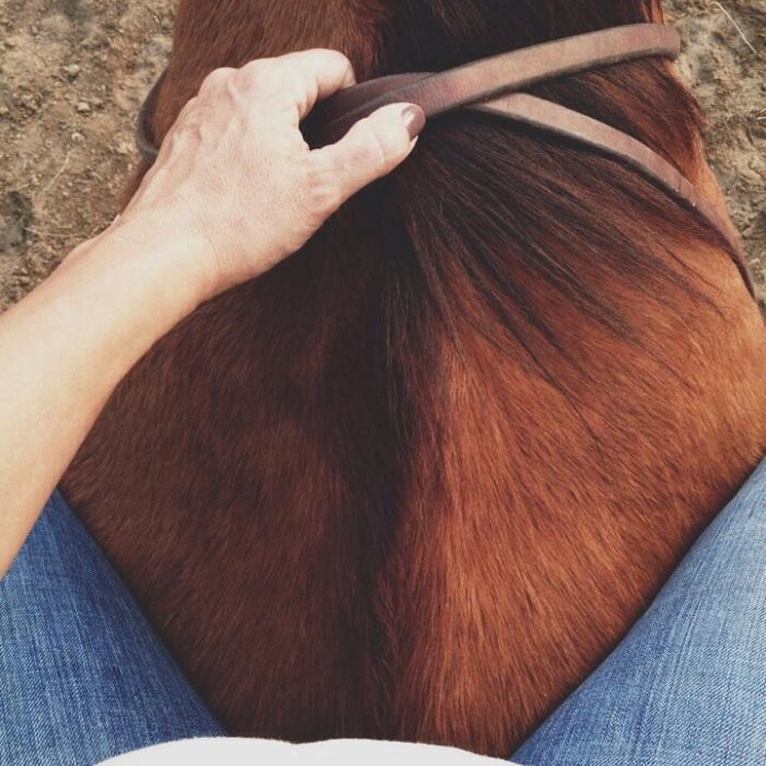 horses, bareback, riding, horses, equine